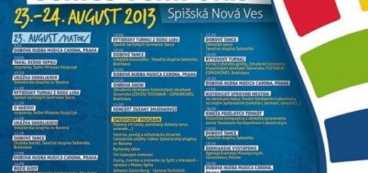 2013_08_snv-genius-program
