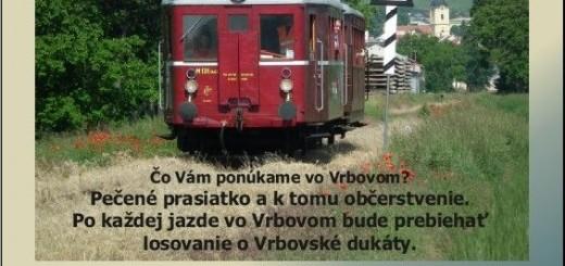 2013_08_vlacik_cango