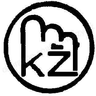 kz-p40024z157393u